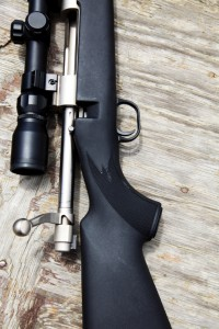 Accent Rifle